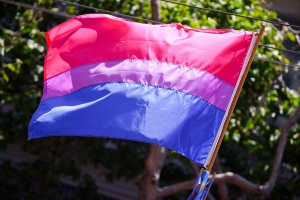 bi-pride flag